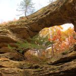 natural_bridge_700x295.jpg