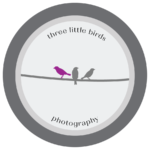 3littlebirds_Logo_purple.png