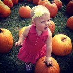 Fall Roundup :: Farms, Pumpkin Patches & Orchards