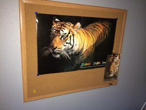 tiger pin board