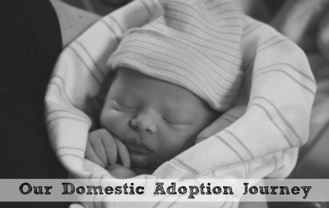 Our-Domestic-Adoption-Journey