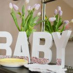 A Baby Sprinkle: Celebrating your Baby