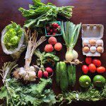 What Is a CSA? How Do I Choose One? – Part II
