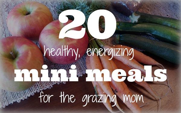 20 Mini Meals