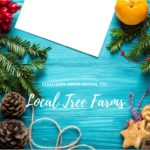 Madison Area Guide to Local Tree Farms