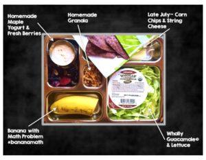 lunchbox post ys 2016 slide 8