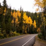 3 Fall Day Trips