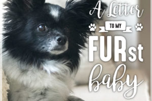Letter-To-My-Furst-Baby-Amy-Johnson