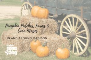 Pumpkin Patches, Farms, & Corn Mazes