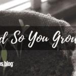 And So You Grow…