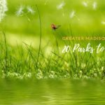 20 Madison Area Parks to Check Out this Spring & Summer!
