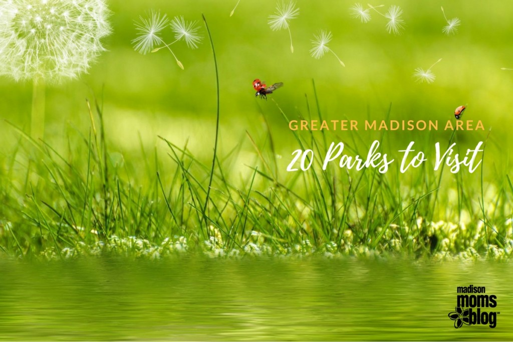 Wingra Park And Camp Randall Public >> 20 Madison Area Parks To Check Out This Spring Summer