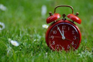 red alarm clock in grass