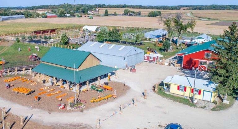 Fall Fun at Schuster's Farm | Deerfield, WI