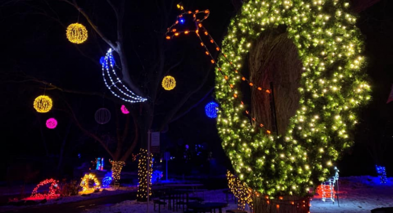 Zoo Lights at Henry Vilas Zoo | November 27 – December 27, 2020