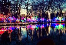 Untitled design 21 218x150 - Holiday Light Show Rotary Botanical Gardens December 22