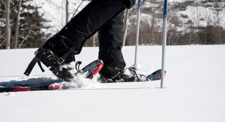Snowshoeing In + Around Madison, WI | + Where to Get the Gear